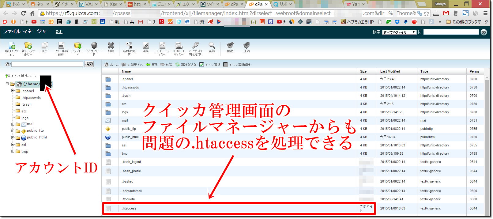 quicca home account id1 追記:クイッカとServer QueenでもInternal Server Errorが出た!